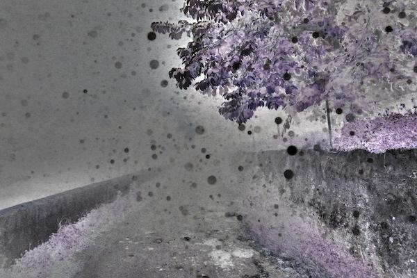 SSKA22_P1230103_35x23_neige nocturne